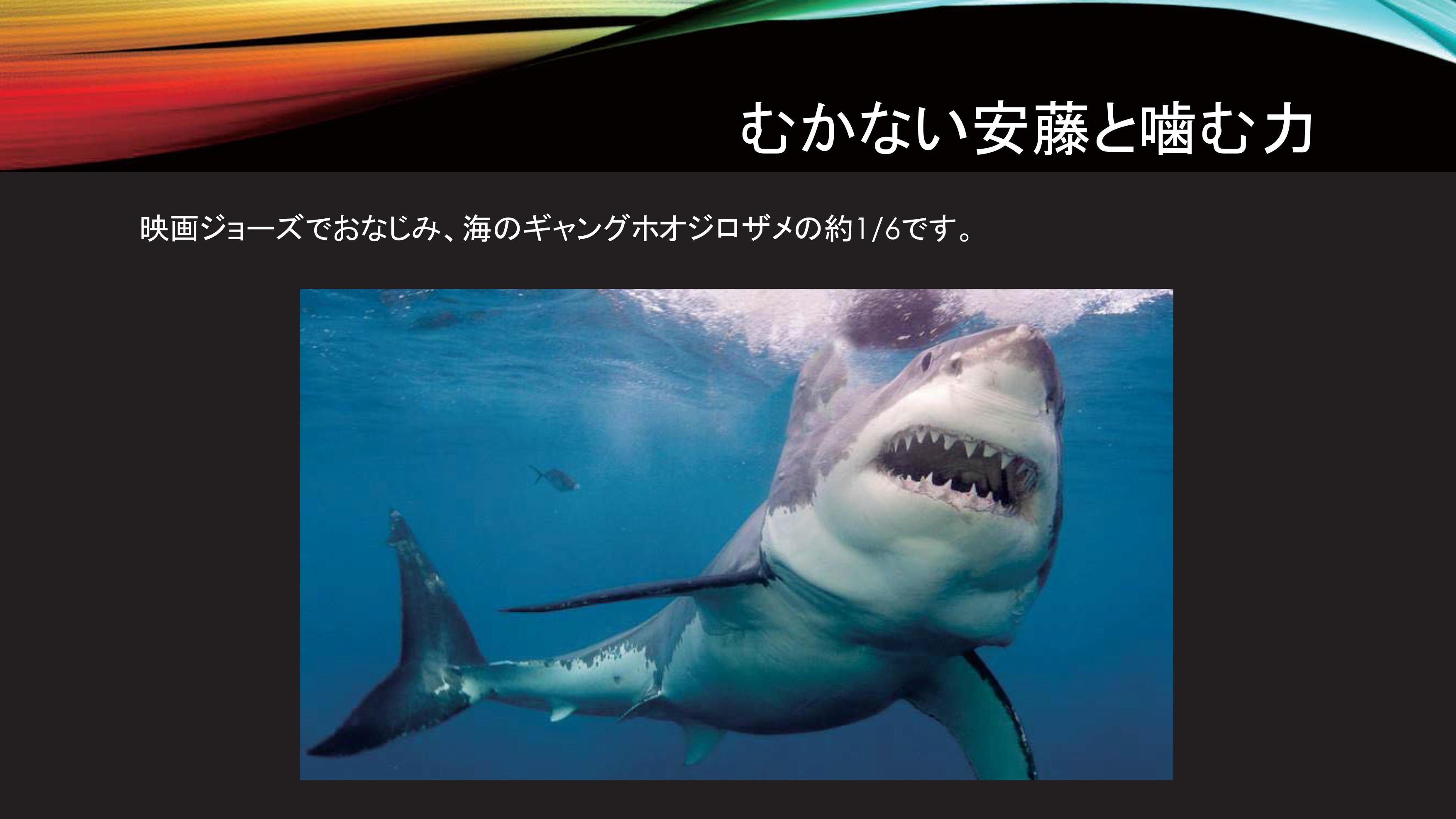 mukanaiando_same.jpg